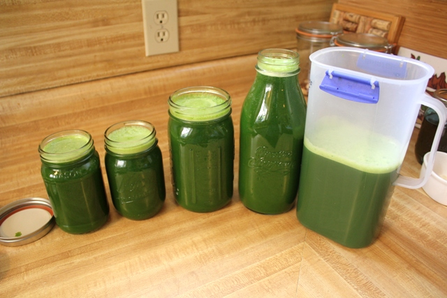 Completed Batch of Green Juice